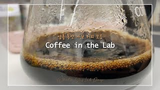 [Coffee in the Lab] 열흘 동안 마신 커…