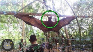 10 Unusual Discoveries In The Middle Of The Jungle