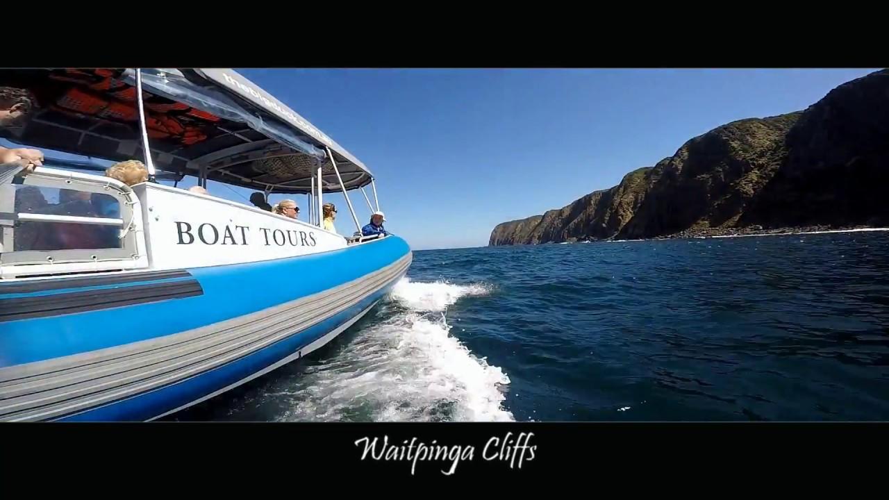 video Southern Ocean Adventure
