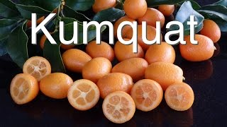Kumquat Tree - What Does It Need To Be Healthy ( Grafted Nagami )