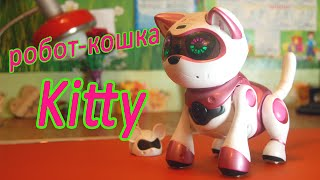 Творим чудеса! Обзор на кошку робота Китти. Teksta Robotic Kitty