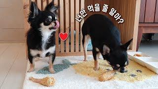 야나두 치킨 닭다리 먹을 수 있어 (항정살, Pork …