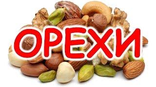 Орехи для детей. Детские развивающие картинки ОРЕХИ. Мультик про орехи.