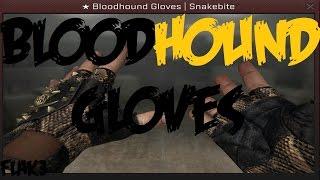 BloodHound Gloves HD Para CS 1.6 [Leet Hands] + Texturas [2017]
