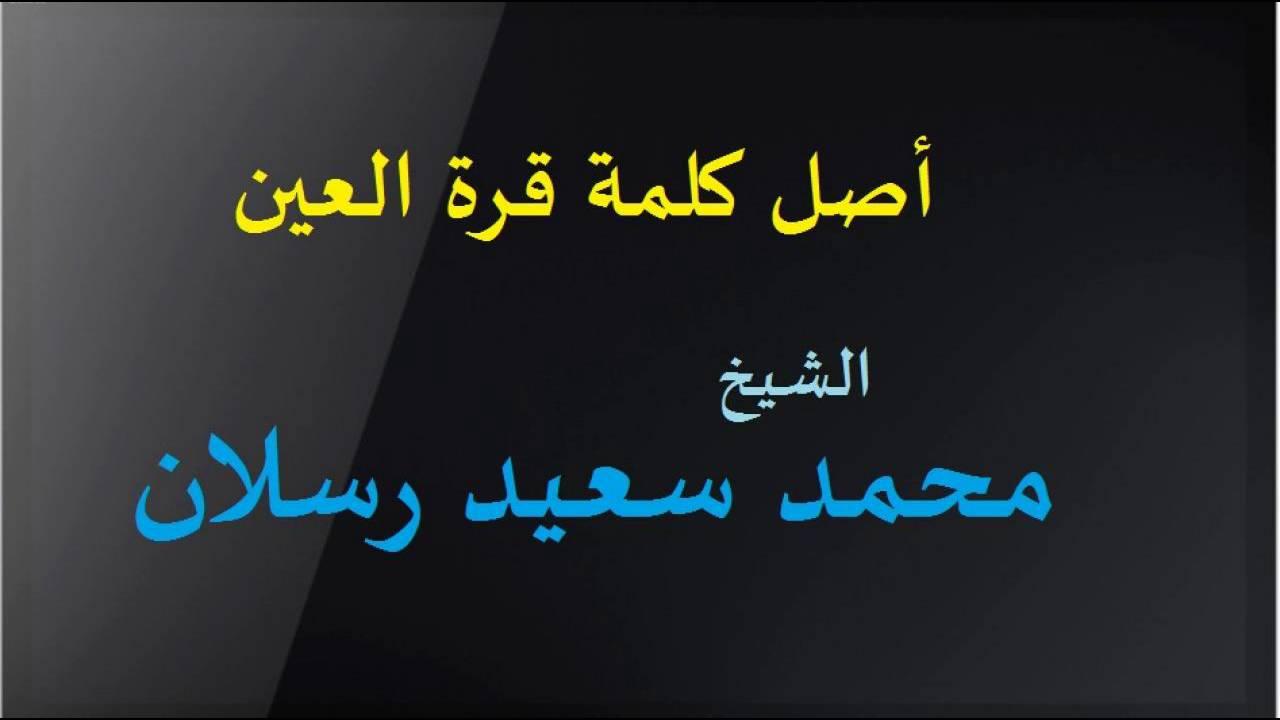 معنى قرة عين من الشيخ الشعراوي 14