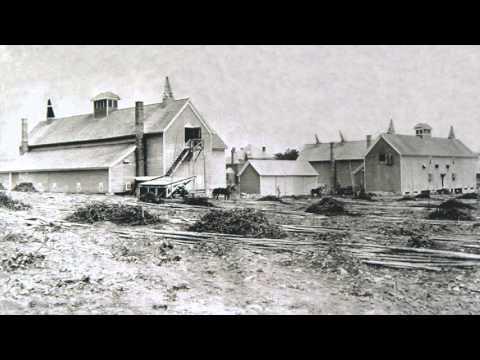Mining The Soil | Clip | Harvest