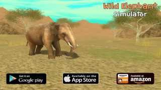 Wild Elephant Sim: Game Trailer for iOS and Android