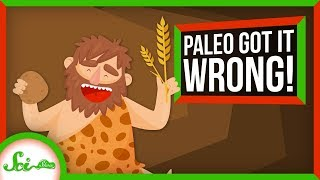 Paleo Got It Wrong: We've Loved Carbs for Over 100,000 Years | SciShow News