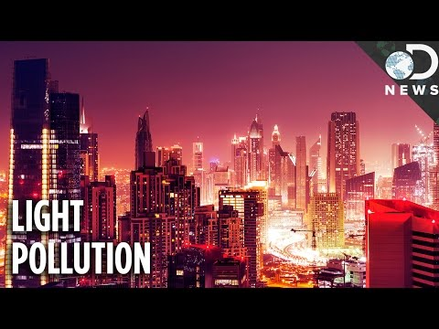 Light Pollution Is More Dangerous Than You Think!