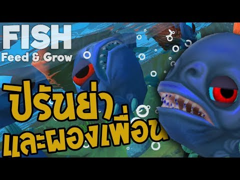 FISH Feed And Grow # ปิรันย่า และผองเพื่อน