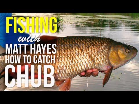 How To Catch Chub - Matt Hayes Fishing Show