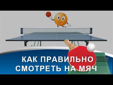 Настольный теннис видео
