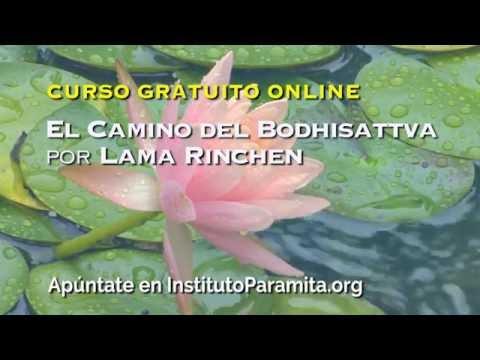 El Camino del Bodhisattva - Curso gratuito online