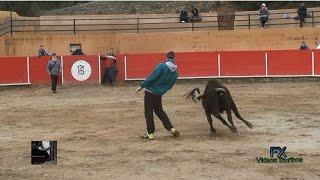 Capea en El Trucho con reses de Benavent (04.12.2016).