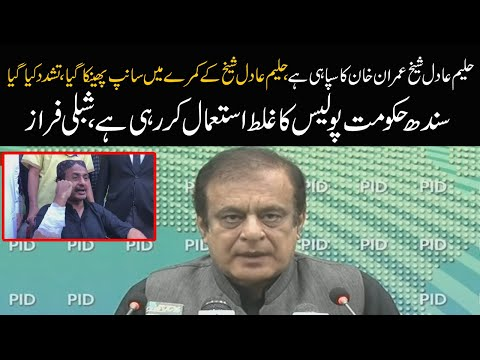 Release Haleem Adil Sheikh immediately | Shibli Faraz Press conference today