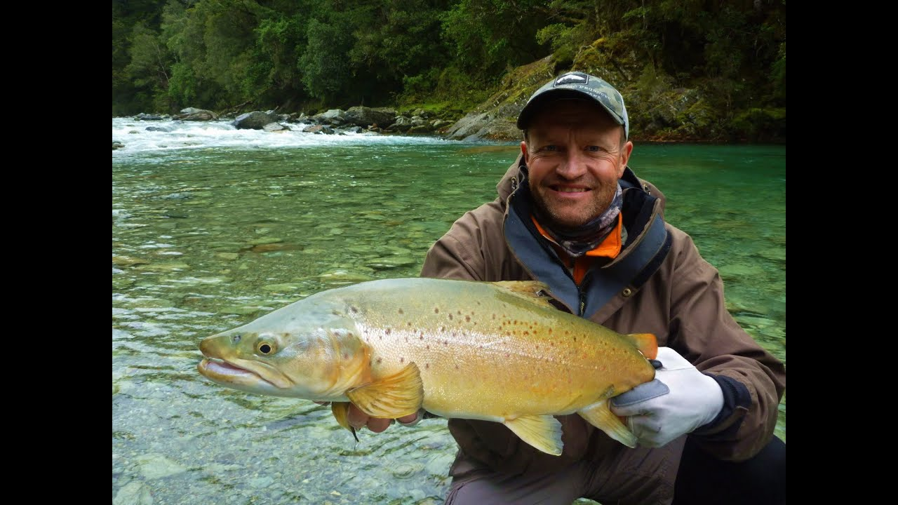 39 taking a chance 39 fly fishing new zealand youtube for Youtube trout fishing
