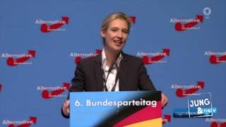 Mashup: AfD-Parteitag... FÜR DEUTSCHLAND!