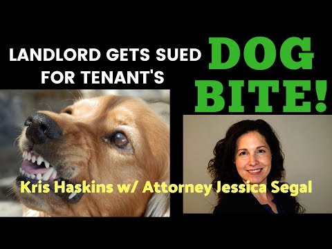 Landlord gets sued for tenant dog bite, live training