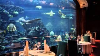 Promotiefilmpje Dubai Hadj Imarat