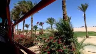 видео Хорошая сеть отелей Iberotel