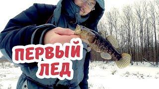 ПЕРВЫЙ ЛЕД. Трофейные ротаны по 700 граммов??!!!