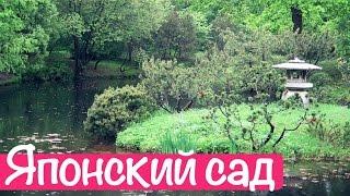 видео Главный ботанический сад Москвы им. Н. В. Цицина