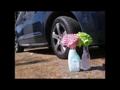caca de paloma pintura auto