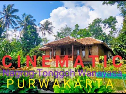 Video Cinematic Kampung Halaman- video Suasana Alam ...