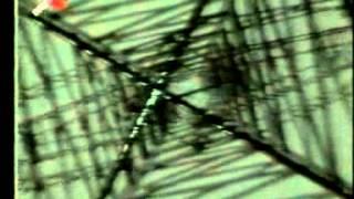 KREATOR Toxic Trace (Musik/Promo-Video 1987)