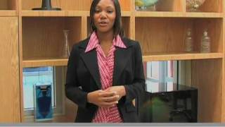 Healthcare Management Degree | Health Care Services streaming