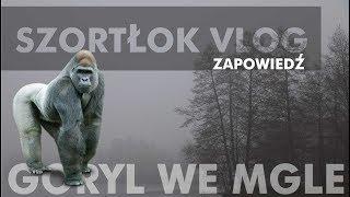 Szortłok Vlog #03 - Goryl we mgle - zapowiedź