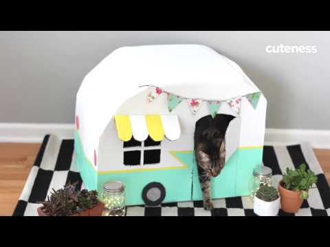 How To Build A Vintage Kitty Camper - Cuteness.com