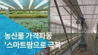 농산물 가격파동 '스마트팜으로 극복'