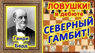 Шахматы ♔ Берд - Ласкер ♕ Шахматные ЛОВУШКИ в дебюте Северный гамбит!