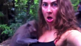 Hot Girl's Boobs revealed by a Monkey