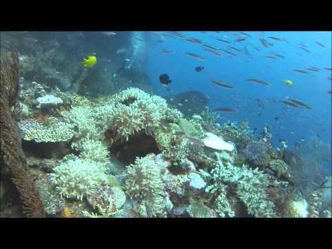 Fiji 2014plusPICS