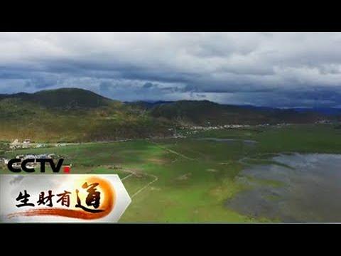 《生财有道》 20180105 茶马古道上的乡愁 | CCTV财经