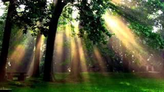 Quiero rayos de sol original
