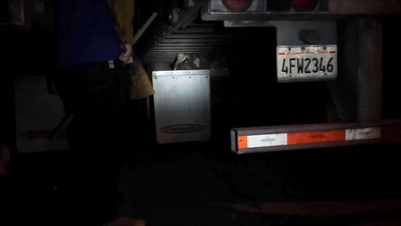 How To Remove A Possum From A Trailer   Without Touching It