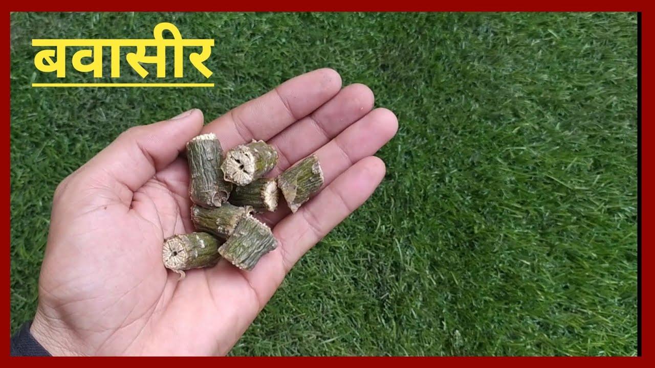बवासीर (Bawaseer) सिर्फ आधा चम्मच खा लो मस्से सूखकर जड़ से खत्म// Bawaseer (Piles) Ka ilaj