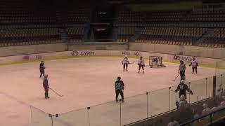 Хоккей ЛНХЛ Оберег-Ястребы 20.12.2017 г. 1 пер. Пермь