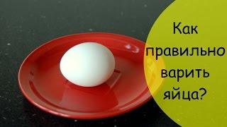 Как варить яйца правильно