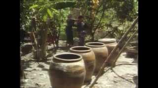 BBC Koshki 4 2002 XviD DVDRip