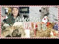 Snow Day & Baking | Vlogcember Day 15, 2017