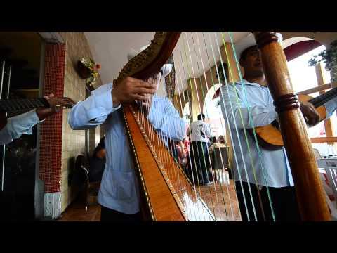 El pájaro campana - Tlacotalpan - Veracruz - Arpa Jarocha