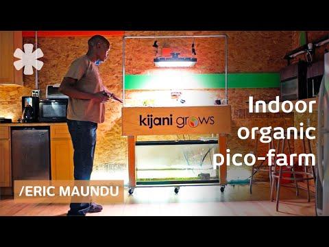 Eric Maundu's home-aquaponics can grow veggies & fish anywhere
