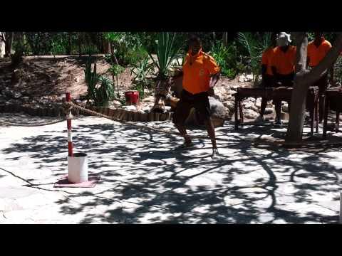 Африканские танцы в зоопарке Фрига
