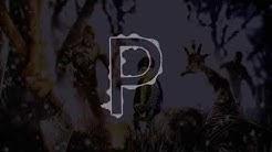 padma sound belgaum trance dj mix - Free Music Download