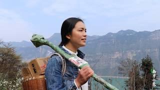 【南方小蓉】中國漂亮姑娘獨居深山與世隔絕,住的地方像人間仙境,太壯觀啦