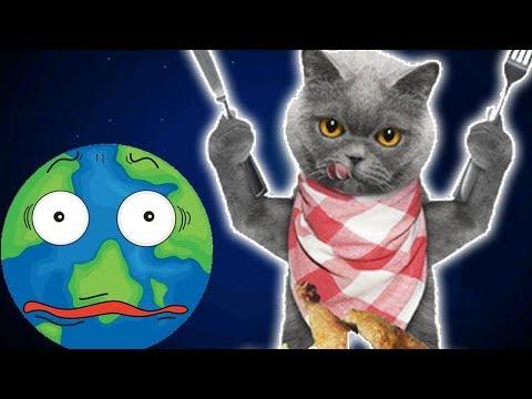 Котик Едун и съедобная планета, мультик игра Детский летсплей, Tasty Planet #3